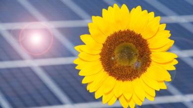 Fotovoltaico: PagoComodo + PagoDopo